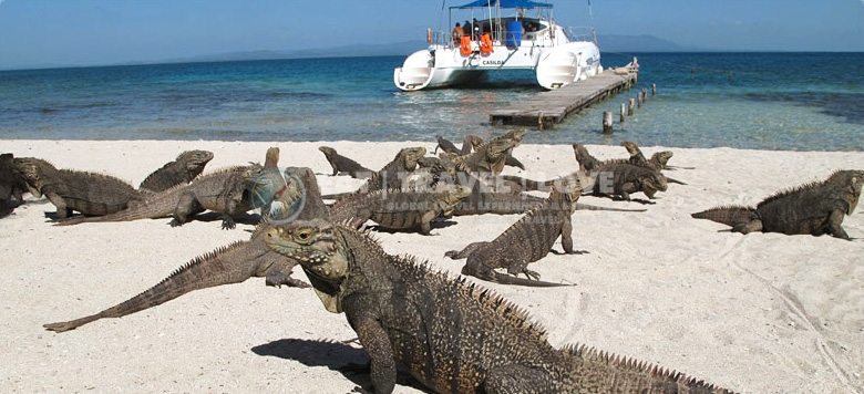 how to get to villas iguanas