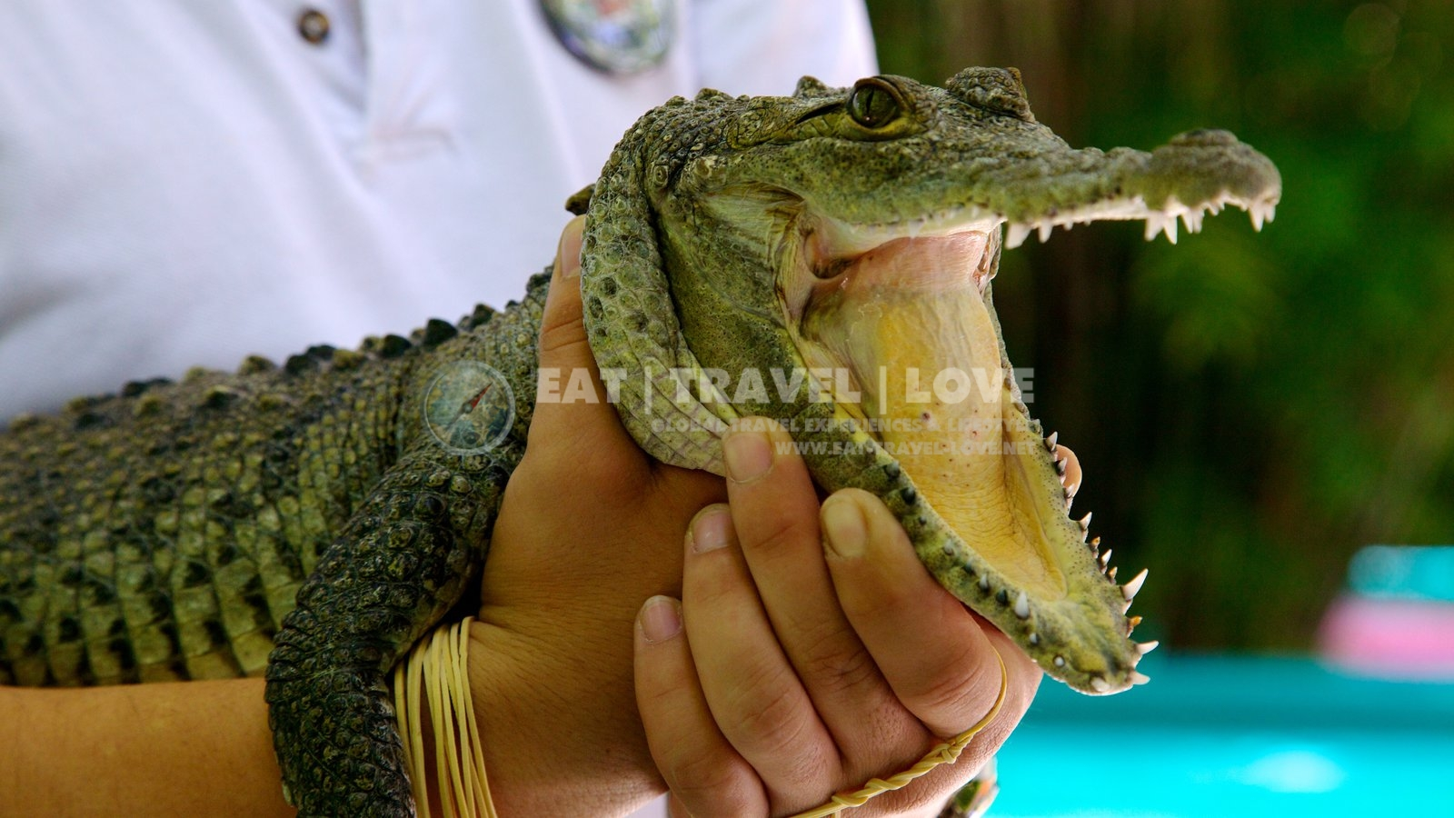 Crococun-Zoo-Cancun_Riviera_Maya